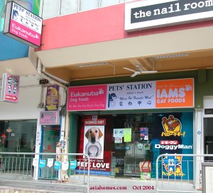 An attractive pet shop frontage, asiahomes.com