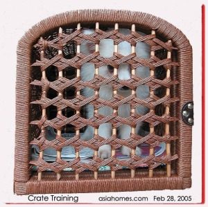 Crate training of a puppy. asiahomes.com
