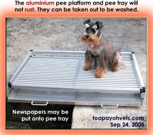 The Aluminium pee platform and tray cost S$150. Toa Payoh Vets